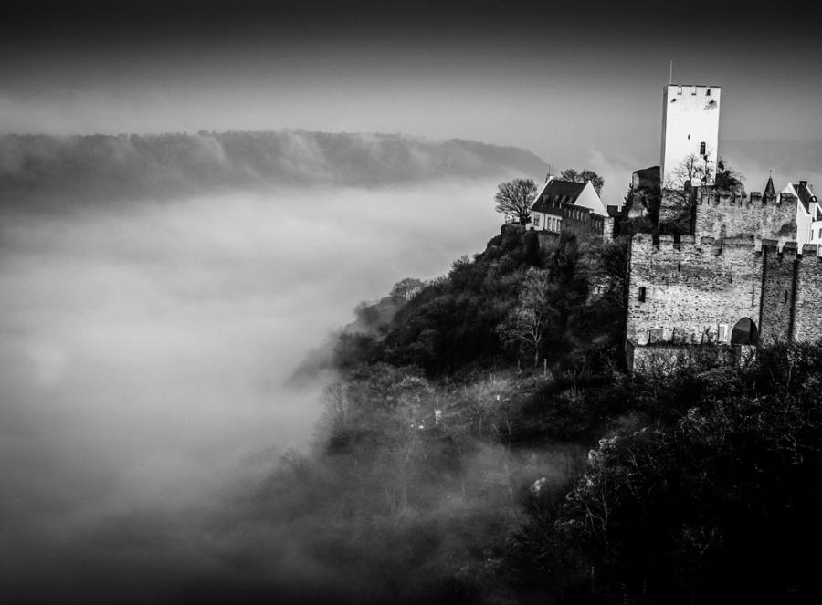 Mist on theRhine